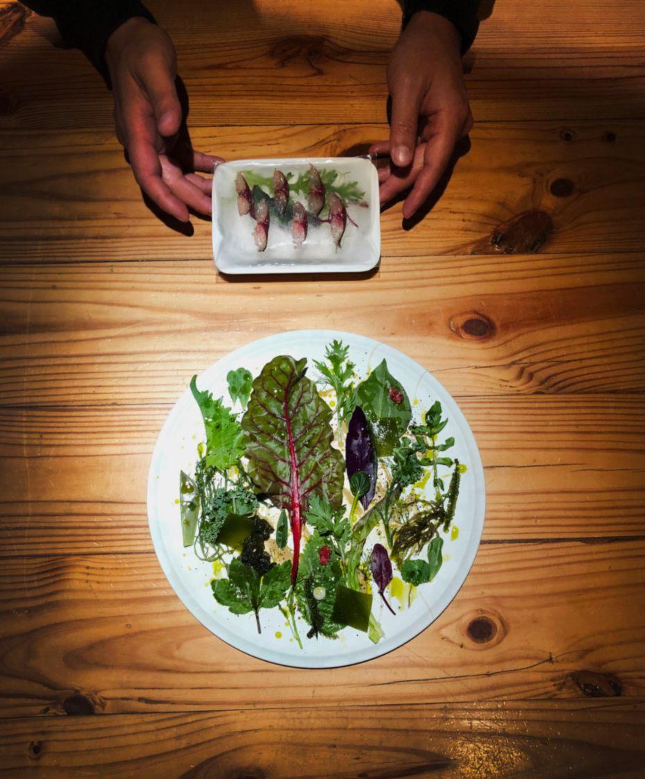 RAW 春季菜單中的「白腹青花|春葉|鮮昆布」,用上幾十種蔬菜製成春蔬沙拉,搭配白腹青花魚薄片。(照片:RAW 提供)