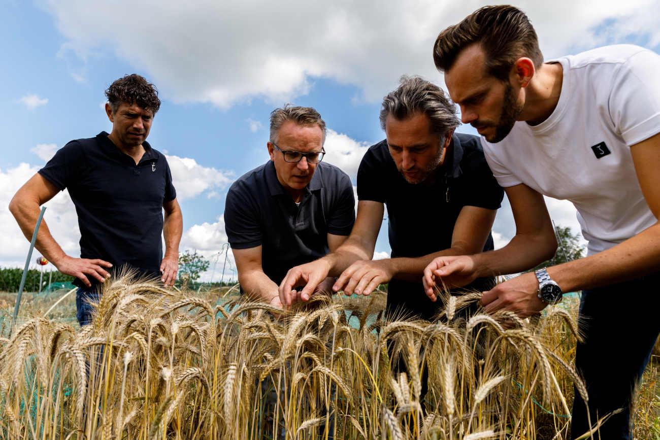 Les quatre hommes derrière Tomasu cultivent leur propre soja et blé. ©Marvin de Kievit