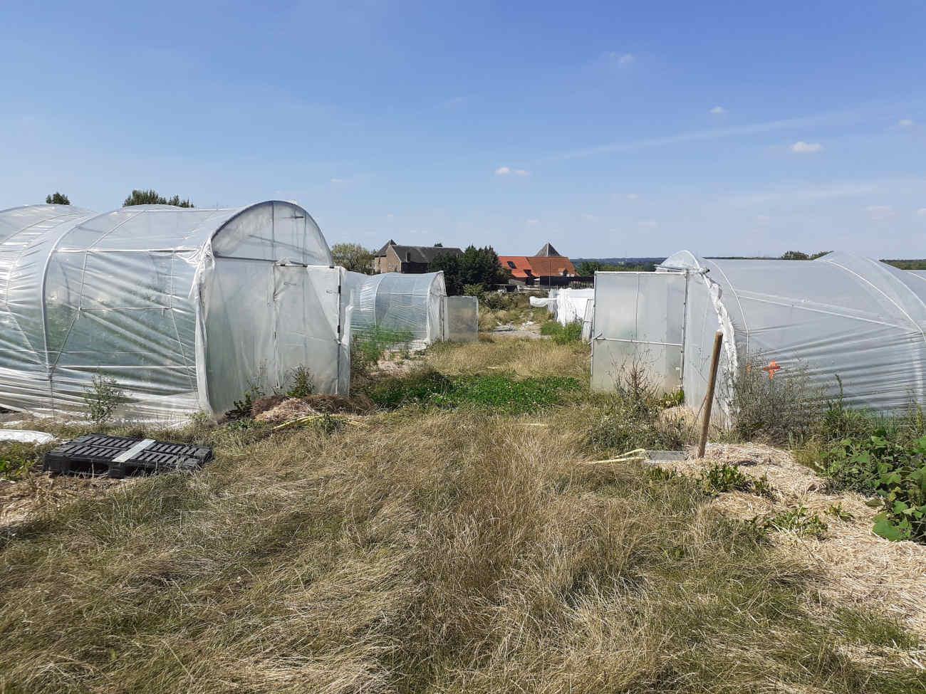 Le potager de l'Atelier de Bossimé se trouve derrière la ferme et le restaurant.