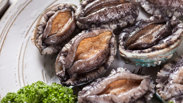 When selecting live abalones, look for those that have strong attachments to the side of the fish tank, or those that move when touched