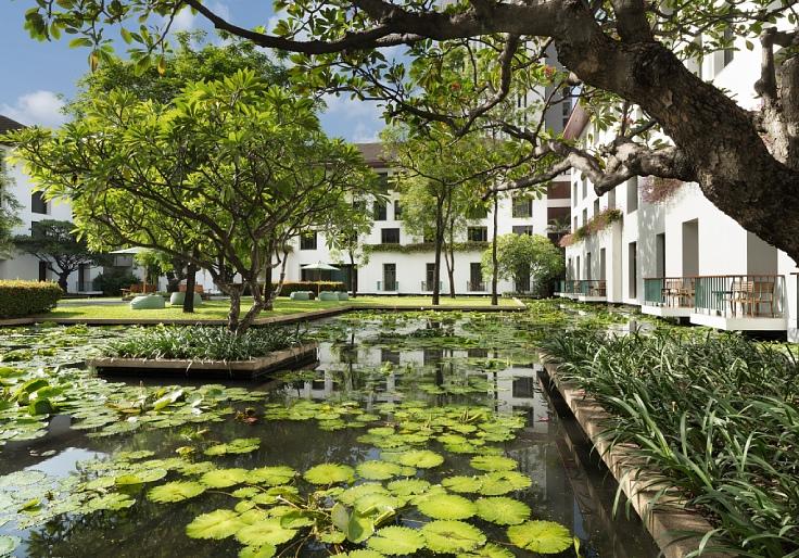 The green lotus pond of The Sukhothai Hotel. (©  The Sukhothai Bangkok)