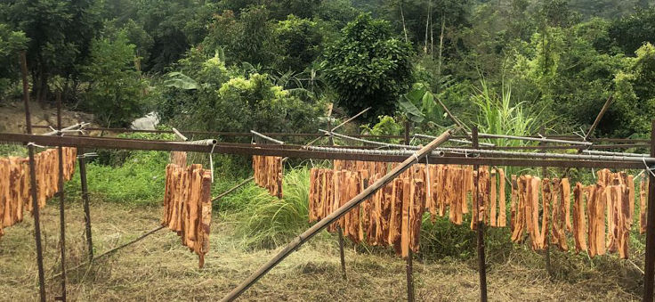 Chinese cured meat is drying in the sun at The Chairman's own farm in Sheung Shui, New Territories. (Photo Source: Danny Yip)