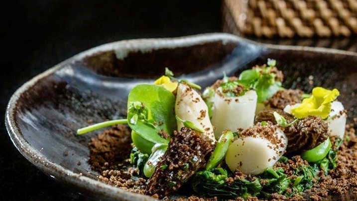 White asparagus, morels, porcini crumbs, and fava bean, topped with mint. Photo courtesy of Campton Place