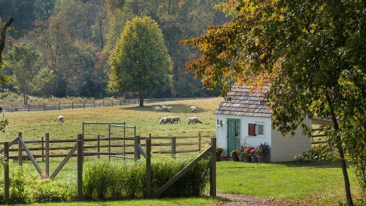 The Inn at Little Washington's garden and farm. Photo by Gordon Beall, courtesy of The Inn at Little Washington