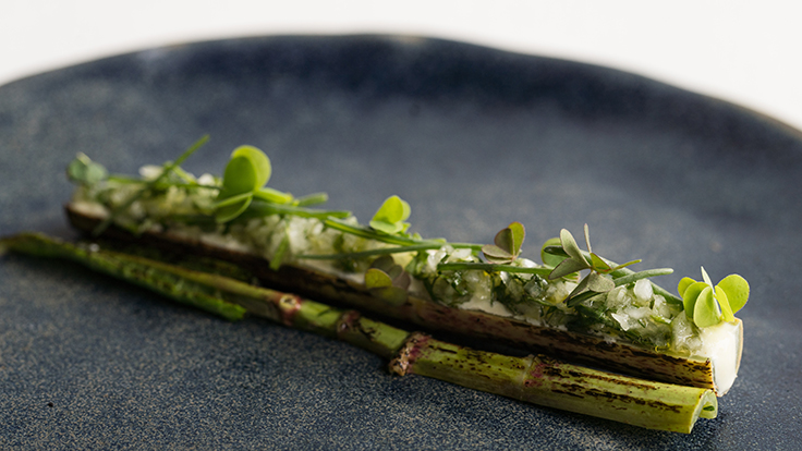 "Chef Victoria Blamey's knotwood ""ceviche"". Photo by Elena Wolfe, courtesy of Stone Barns Center"