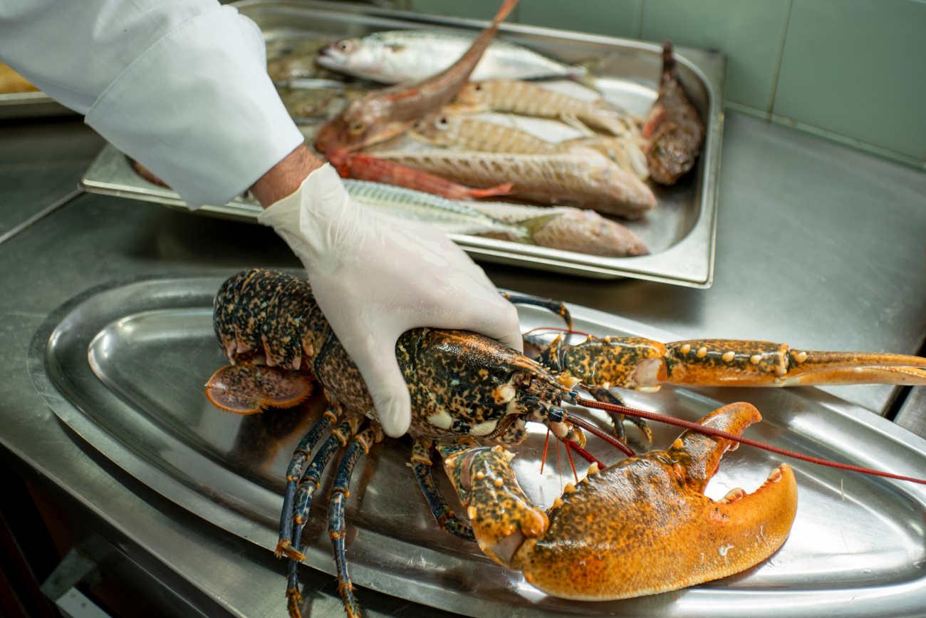 A lobster at Gostilna Za Gradom © Aaron Chervenak