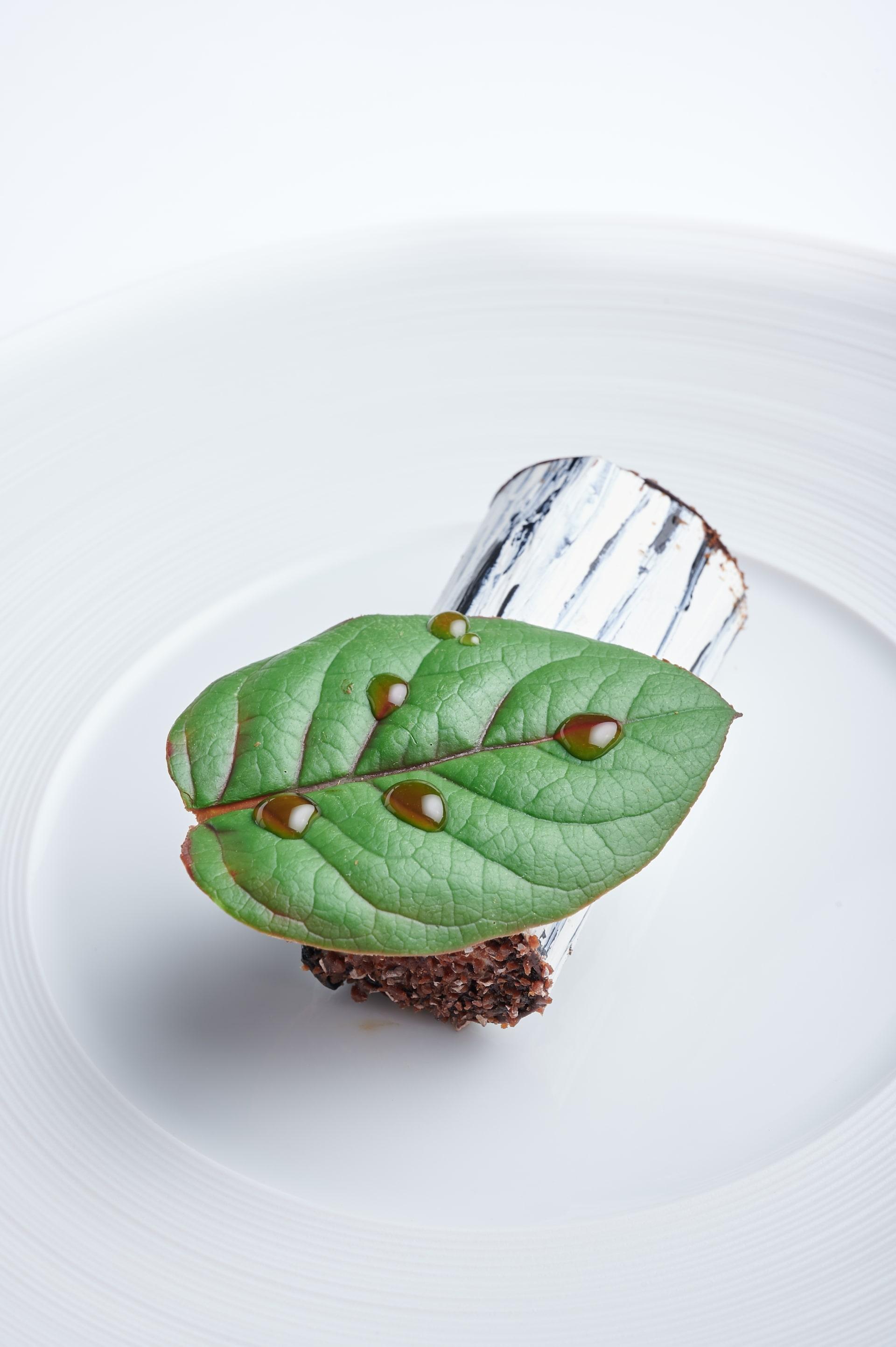 chocolate dessert - black forest-min (1).jpg