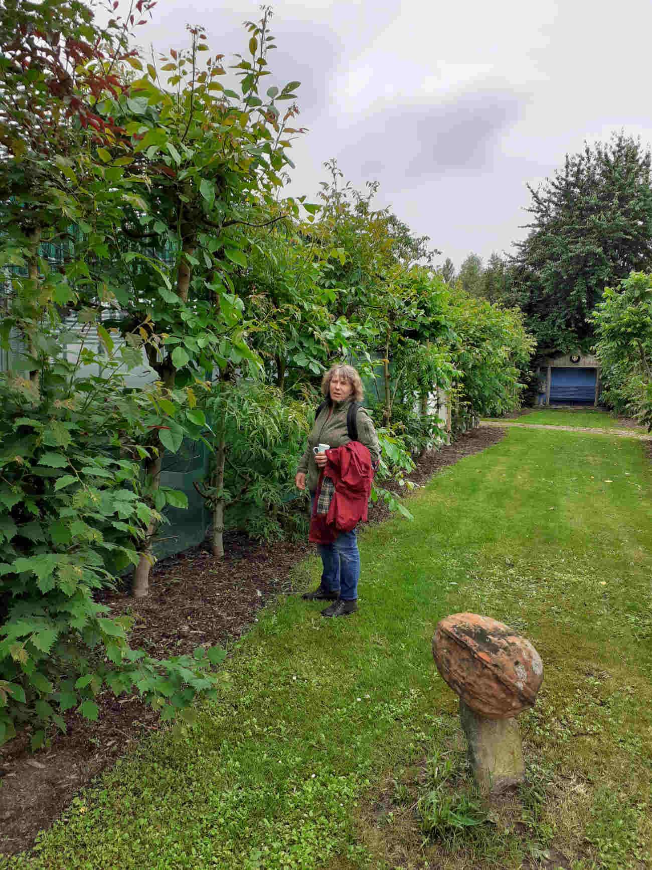 Pip Gilmore bij enkele notenbomen van De Smallekamp, waarmee het voedselbos begon.